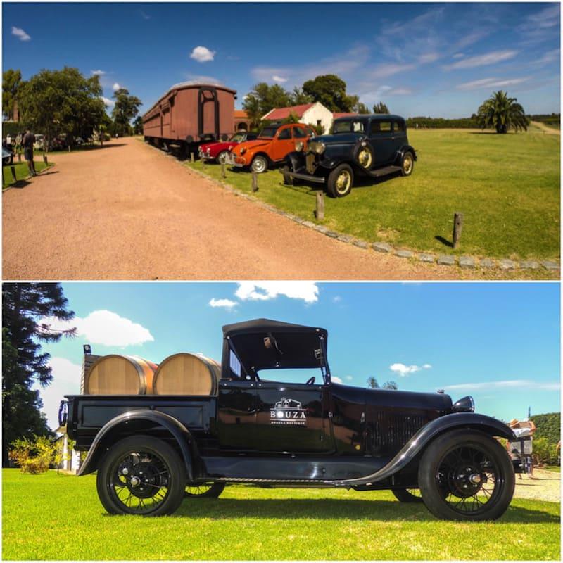 Alguns dos carros que fazem parte do museu da bodega