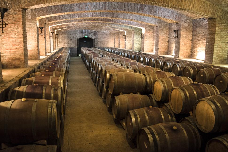 alt-vinhos-chilenos-destino-algum-vina-undurraga-4