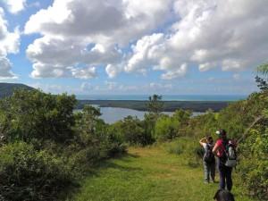 trilha-ratones-costa-da-lagoa-9